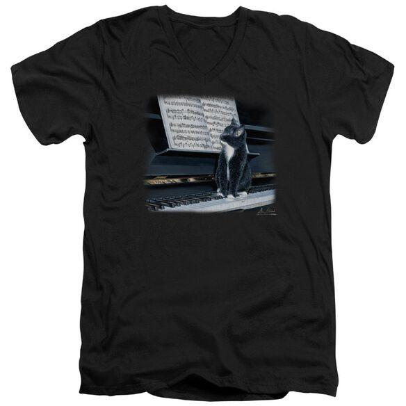 Wildlife Kitten On The Keys Short Sleeve Adult V Neck T-Shirt