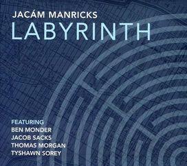 Jacam Manricks - Labyrinth