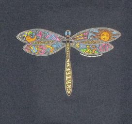 Grateful Dead Dragonfly Steel Blue Youth T Shirt