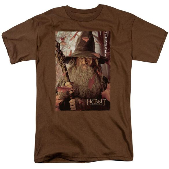 The Hobbit Gadalf Poster Short Sleeve Adult T-Shirt