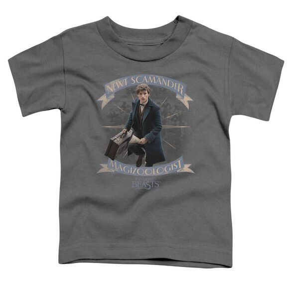 Fantastic Beasts Newt Scamander Short Sleeve Toddler Tee Charcoal T-Shirt