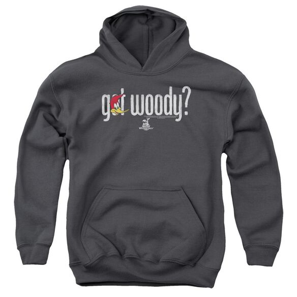 Woody Woodpecker Got Woody Youth Pull Over Hoodie