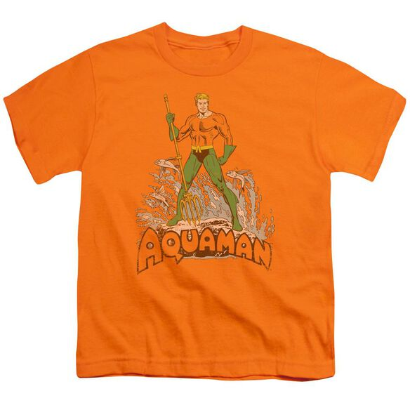 Dc Aquaman Distressed Short Sleeve Youth T-Shirt