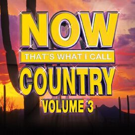 Various Artists - Now That's What I Call Country, Vol. 3