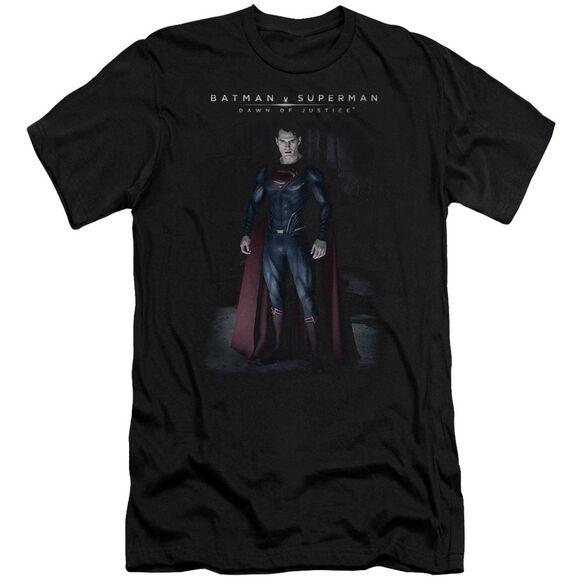 Batman V Superman Stand Tall Short Sleeve Adult T-Shirt