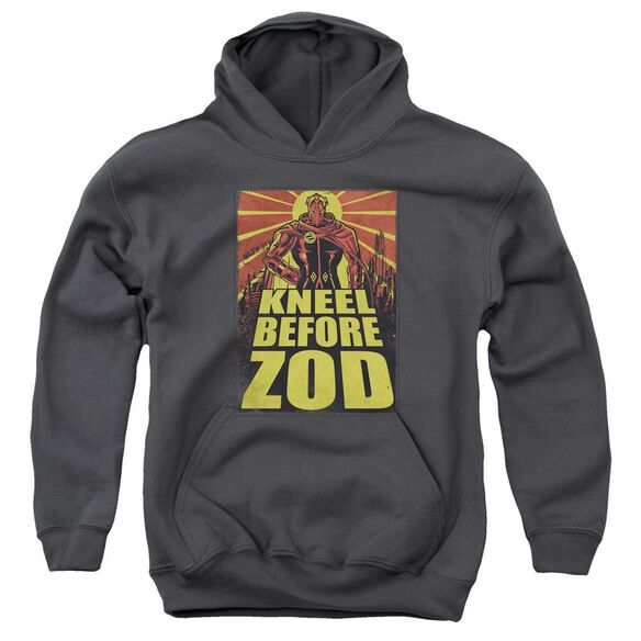 Superman Zod Poster Youth Pull Over Hoodie
