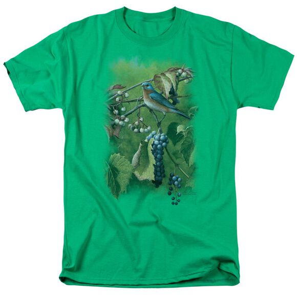 Wildlife Summertime Estrn Bluebird Short Sleeve Adult Kelly T-Shirt