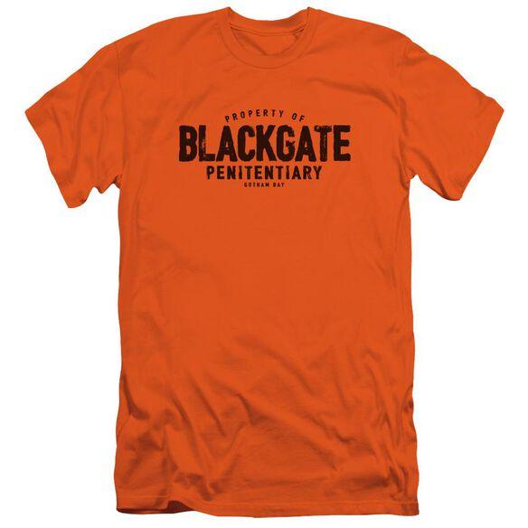 Batman Blackgate Short Sleeve Adult T-Shirt