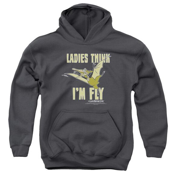 Land Before Time Im Fly Youth Pull Over Hoodie