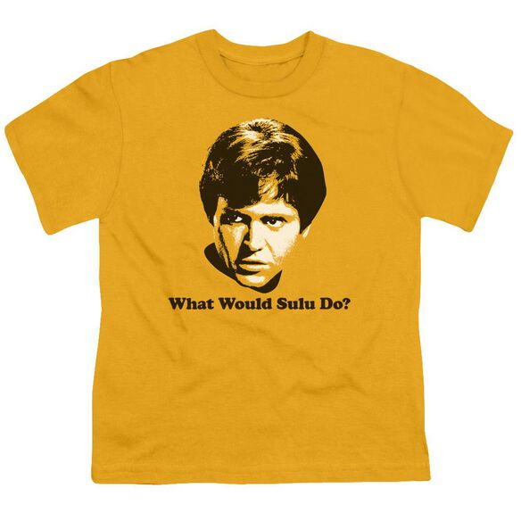 Star Trek What Would Sulu Do Short Sleeve Youth T-Shirt