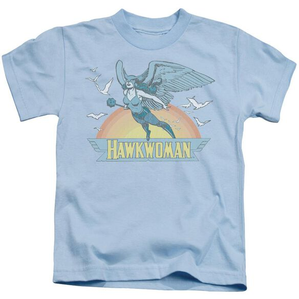 Dc Hawkwoman Short Sleeve Juvenile Light Blue T-Shirt