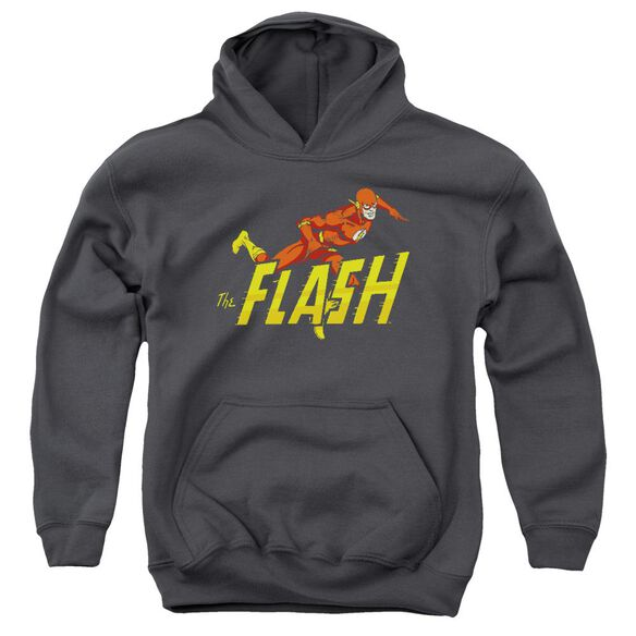 Dc Flash 8 Bit Flash Youth Pull Over Hoodie