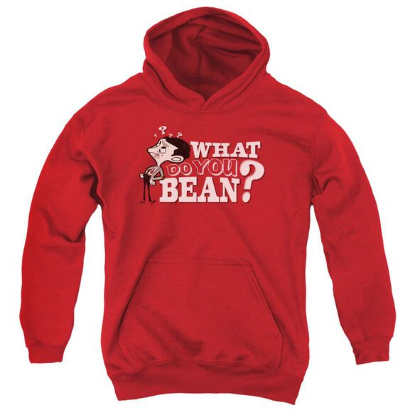 Mr Bean What You Bean Youth Pull Over Hoodie