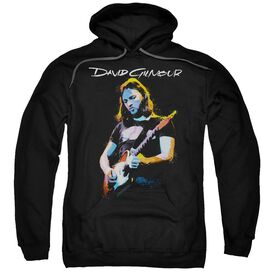 David Gilmour Guitar Gilmour Adult Pull Over Hoodie