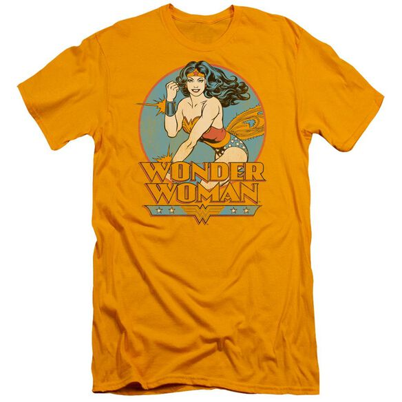 Dc Wonder Woman Short Sleeve Adult T-Shirt
