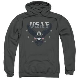 Air Force Incoming Adult Pull Over Hoodie
