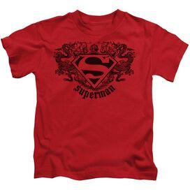 SUPERMAN SUPERMAN DRAGON - S/S JUVENILE 18/1 - RED - T-Shirt