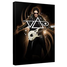 Steve Vai Ethereal Canvas Wall Art With Back Board