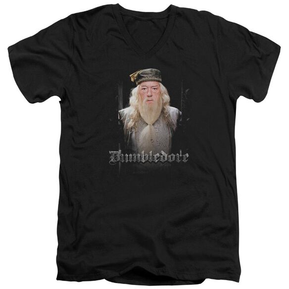 Harry Potter Dumble Doors Short Sleeve Adult V Neck T-Shirt