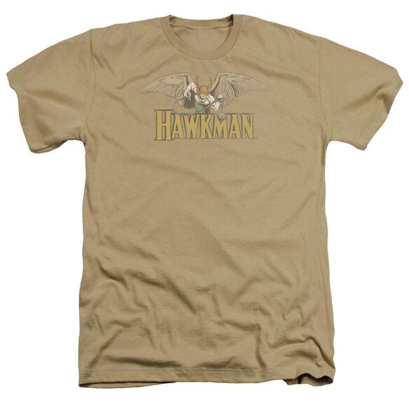 Dc Hawkman Adult Heather