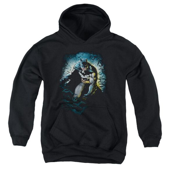 Batman Bat Cave Youth Pull Over Hoodie