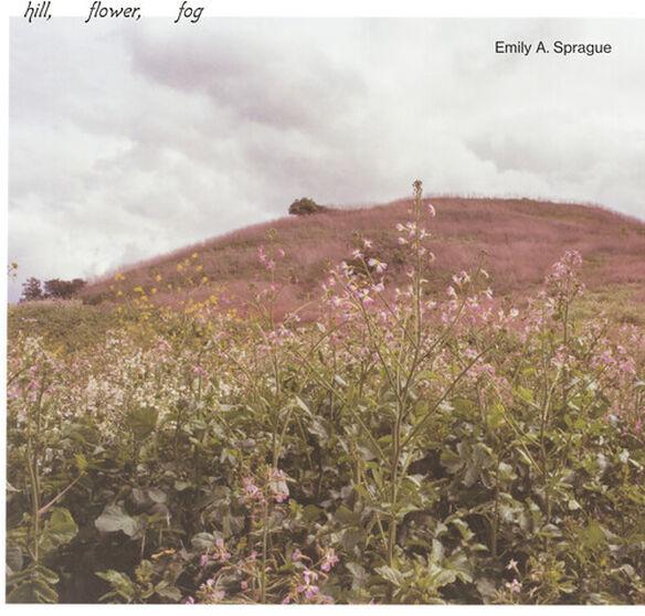 Emily a Sprague - Hill, Flower, Fog
