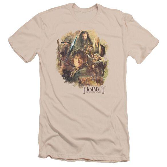 Hobbit Collage Short Sleeve Adult T-Shirt