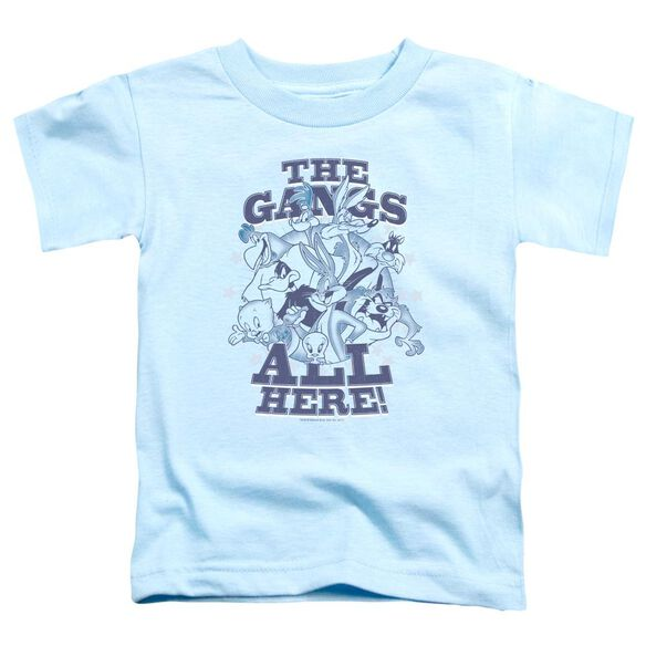 Looney Tunes Blue Gang Short Sleeve Toddler Tee Light Blue T-Shirt