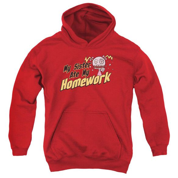 My Sister Ate My Homework Youth Pull Over Hoodie