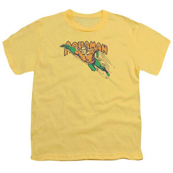 Dc Swim Through Short Sleeve Youth T-Shirt