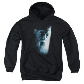 Harry Potter Dumbledore Face-youth