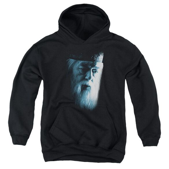 Harry Potter Dumbledore Face Youth Pull Over Hoodie