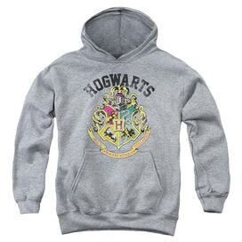 Harry Potter Hogwarts Crest Youth Pull Over Hoodie Athletic