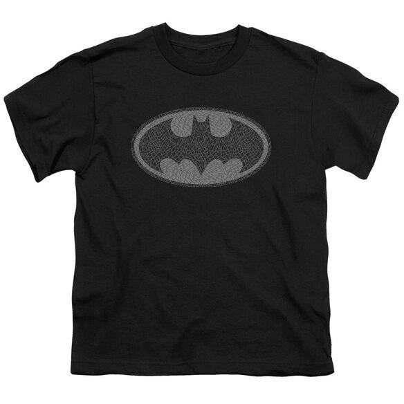 Batman Elephant Signal Short Sleeve Youth T-Shirt