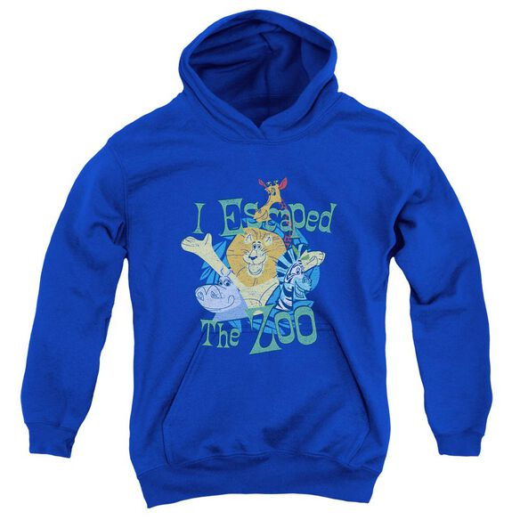 Madagascar Escaped Youth Pull Over Hoodie
