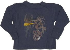 Dragon Flame Long Sleeve Toddler T-Shirt