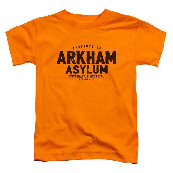 Batman Arkham Asylum Short Sleeve Toddler Tee Orange T-Shirt