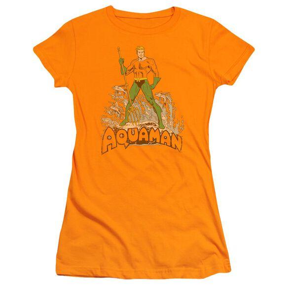 Dc Aquaman Distressed Short Sleeve Junior Sheer T-Shirt