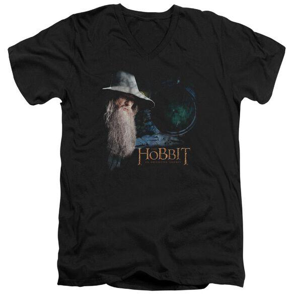 The Hobbit The Door Short Sleeve Adult V Neck T-Shirt