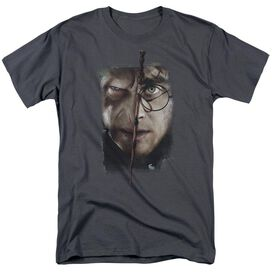 Harry Potter It All Ends Here Short Sleeve Adult T-Shirt