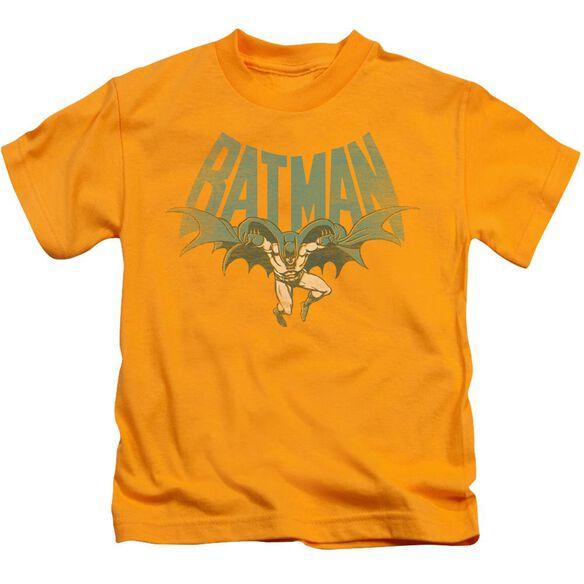Dc Flying Bat Short Sleeve Juvenile Gold Md T-Shirt