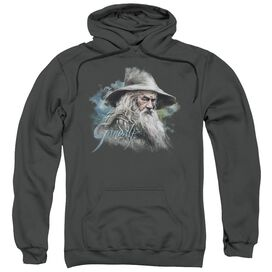The Hobbit Gandalf The Grey Adult Pull Over Hoodie