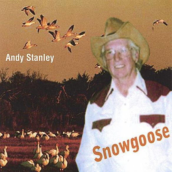Andy Stanley - Snowgoose