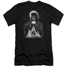 Labyrinth Castle Short Sleeve Adult T-Shirt