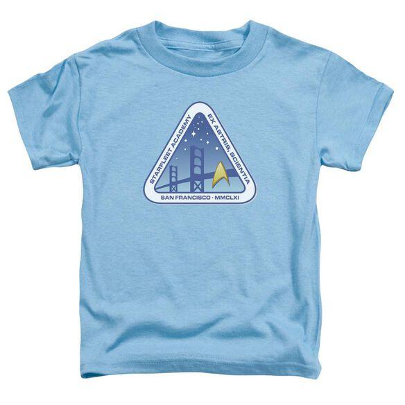 Star Trek Color Logo Short Sleeve Toddler Tee Carolina Blue Sm T-Shirt