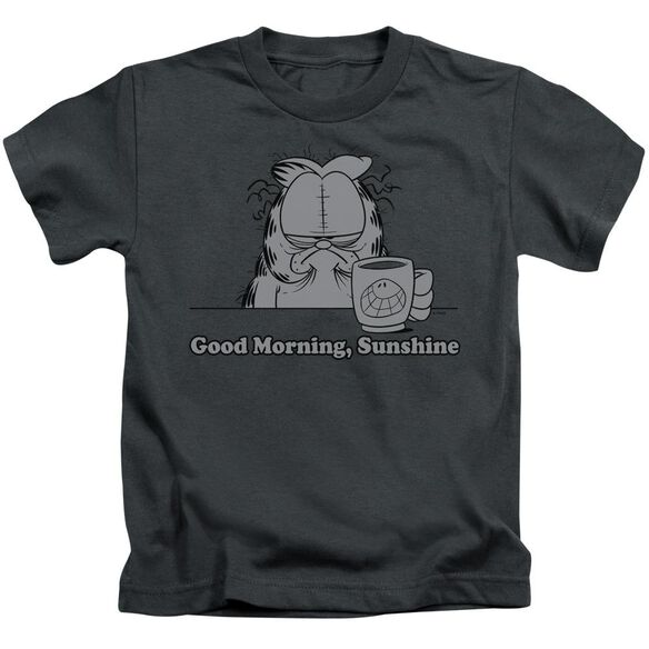 GARFIELD GOOD MORNING SUNSHINE - S/S JUVENILE 18/1 - CHARCOAL - T-Shirt