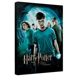Harry Potter Order Of The Phoenix Canvas Wall Art With Back Board
