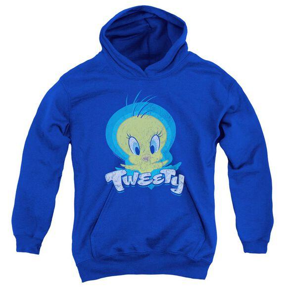 Looney Tunes Tweety Swirl Youth Pull Over Hoodie Royal