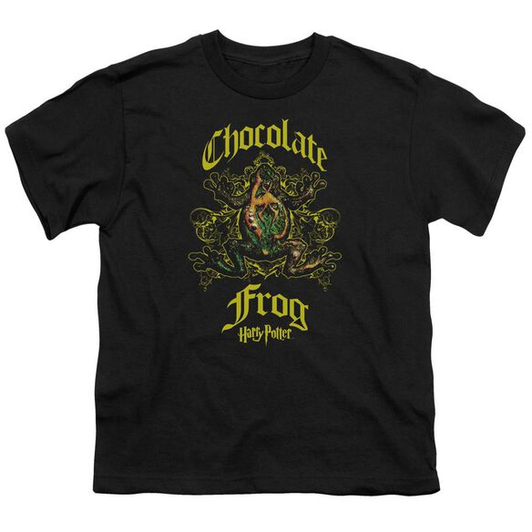Harry Potter Chocolate Frog Short Sleeve Youth T-Shirt