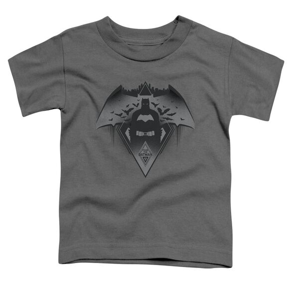 Batman V Superman Fear Short Sleeve Toddler Tee Charcoal T-Shirt